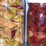 dehydrated apples and tomatoes in jars