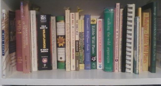 foraging books on a shelf